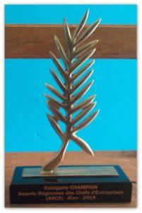 Award-Shadow